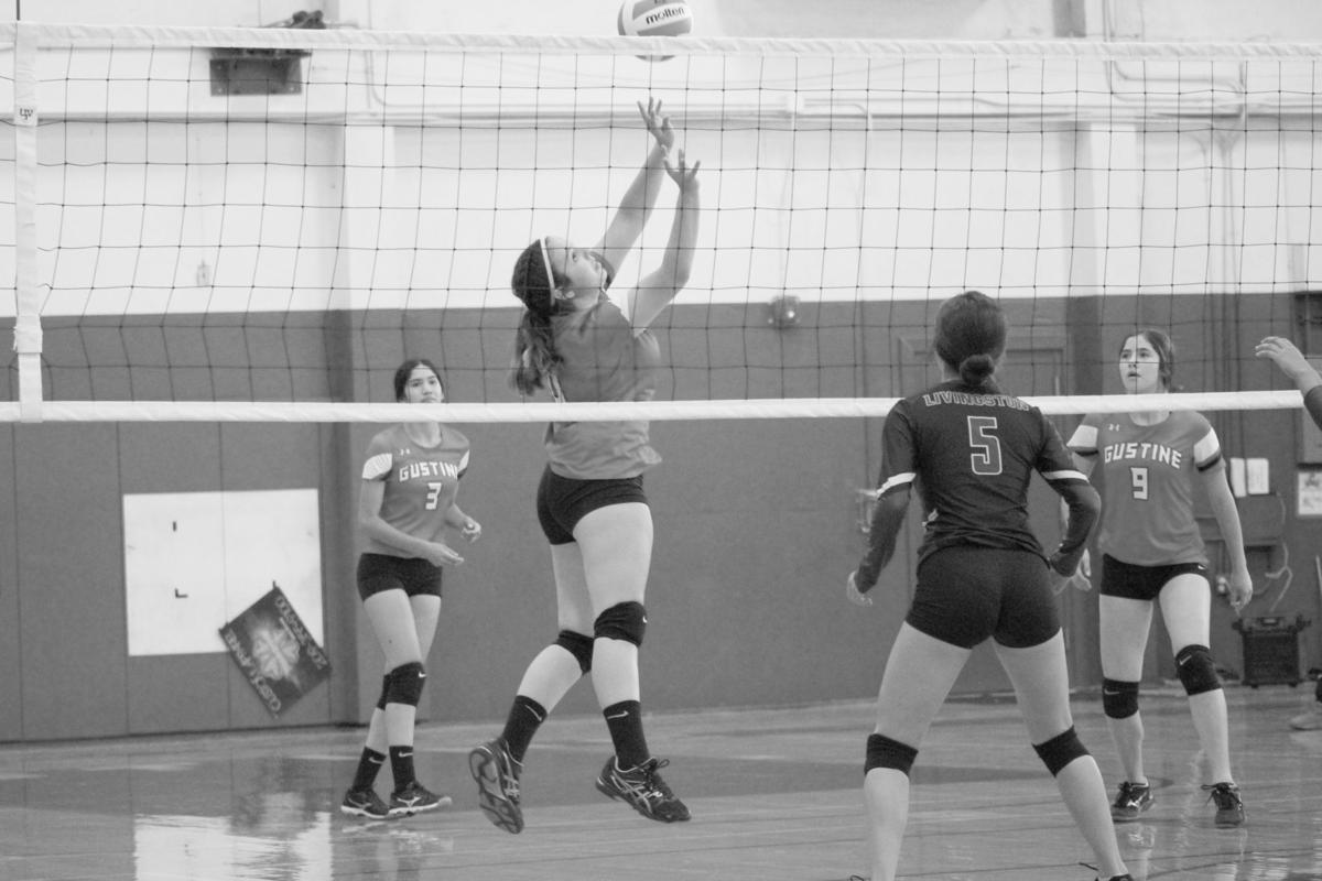 ghs varsity volleyball 1.JPG