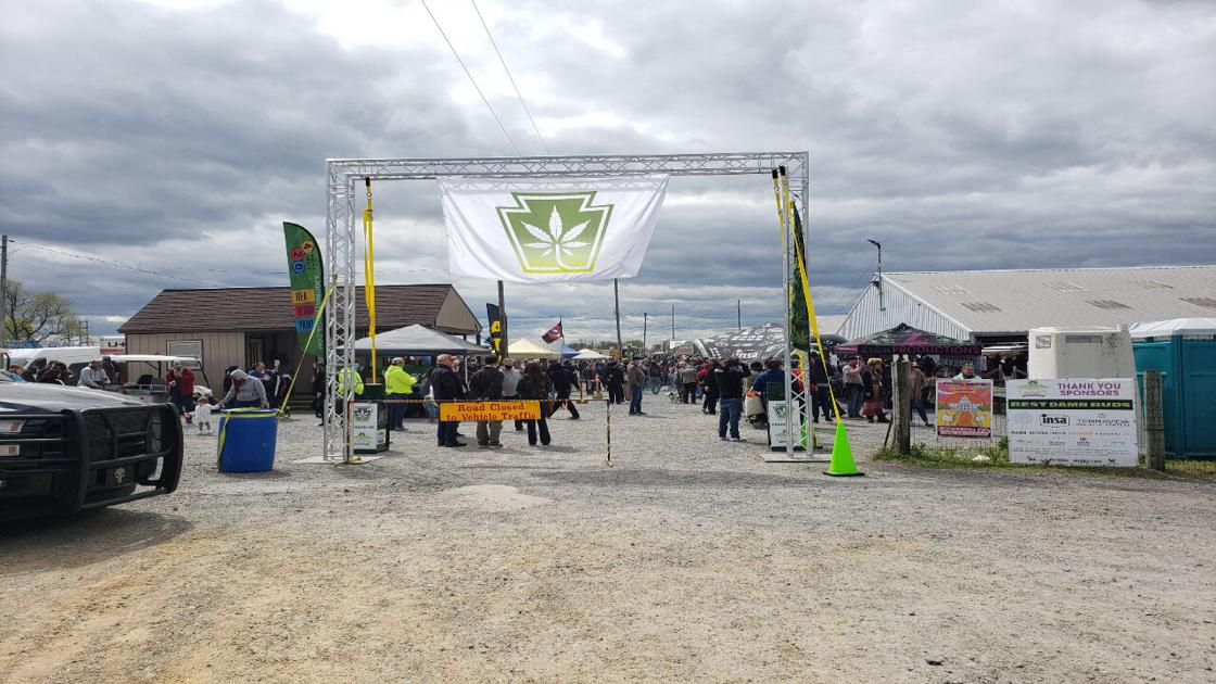 Cannabis Festival returns to Kutztown with thousands in attendance
