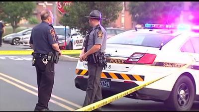 Bethlehem gang member charged in stabbing, burning death of teen