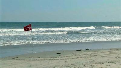 Police ID Berks man who died trying to save son from ocean