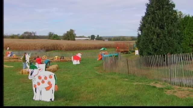 Celebrate Fall At Oley Turnpike Dairy Berks Regional News Wfmz Com