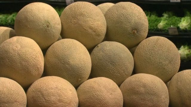 Listeria Case Reported In Area Southeastern Pennsylvania Wfmz Com Only one colorado farm supplied cantaloupes contaminated with the listeria bacteria that killed 33 people and sickened at least 147 more in 28 states in 2011. wfmz com