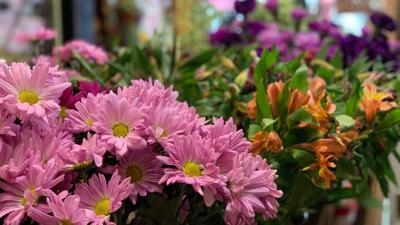 Valentine's Day a 'nightmare' for busy flower shops