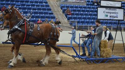 1-9-20 Dan Meuser - celebrity feed scurry competition at Pennsylvania Farm Show 1.jpg