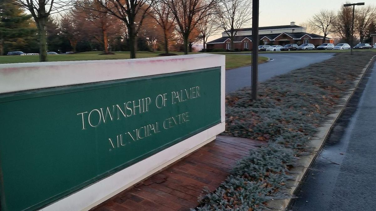 Palmer Township rope-swing tree comes down, social media mourns