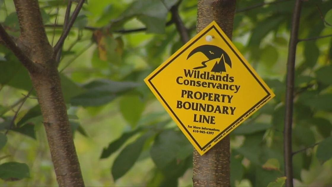 Wildlands Conservancy acquires new land to protect in Lehigh County