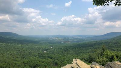Grant to support raptor care, conservation at Hawk Mountain