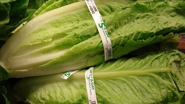 Deadly E. coli outbreak tied to romaine spreads