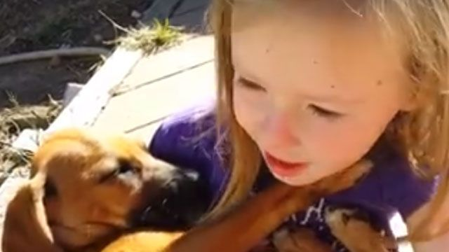 Little CT girl's dog video goes viral