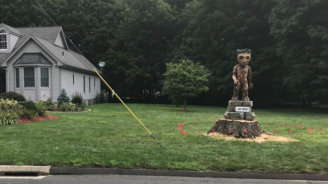 Groot from 'Guardians of the Galaxy' flees Wakanda, ends up in Cheshire