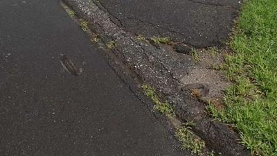 Neighbors troubled after squirrel tails found on street