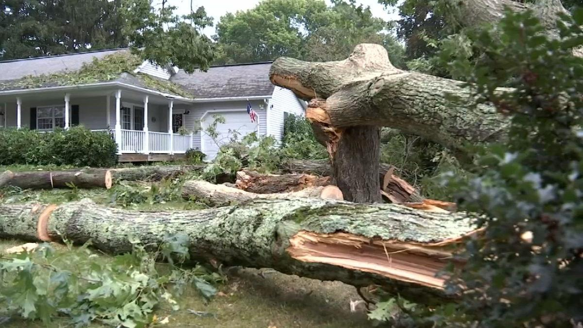 Powerful overnight storm causes damage, power outages