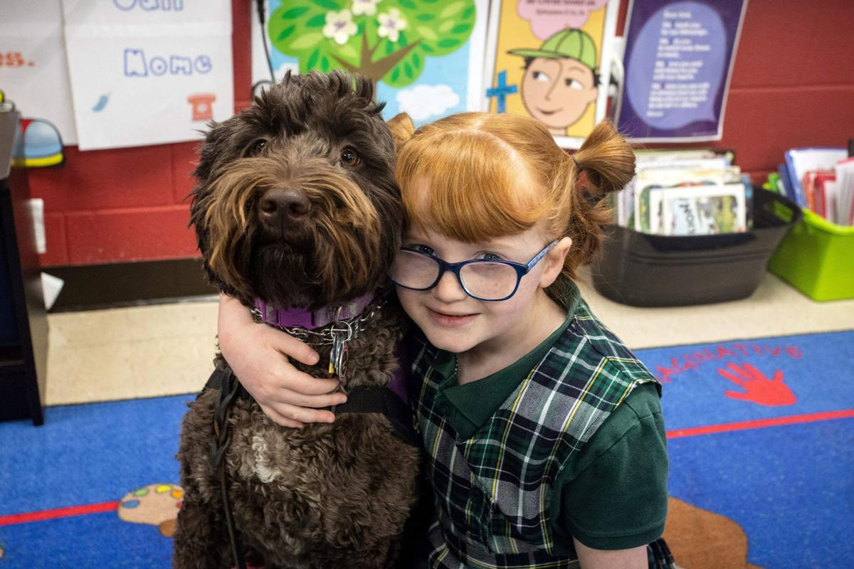 A Kentucky school surprised a little girl by including a photo of her service dog in the yearbook