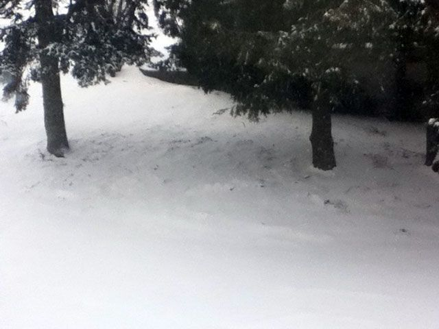Your Winter Weather Photos 1/21/12
