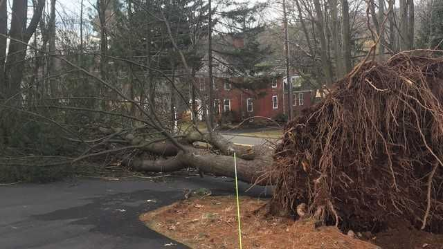 Majority of Eversource outages to be restored by Sunday evening