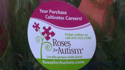 Roses for Autism