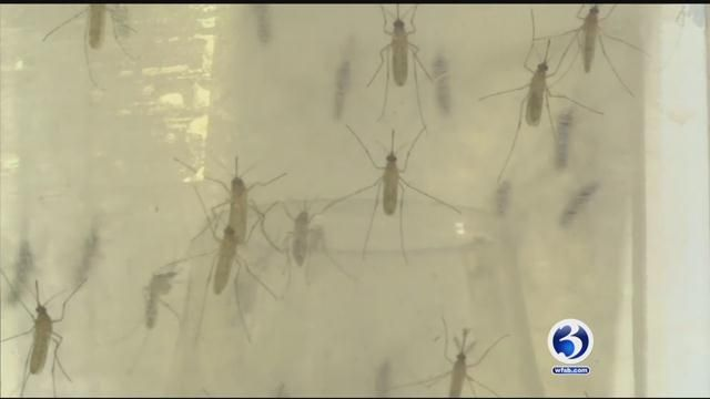 Public health officials warn of increased West Nile activity