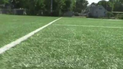 Officials call on funding for study on safety of artificial turf