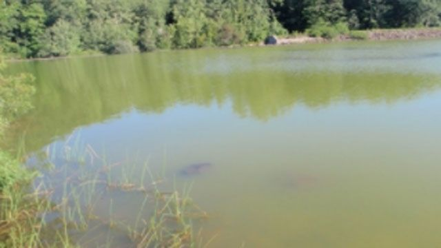 2 state swimming areas closed due to water quality concerns