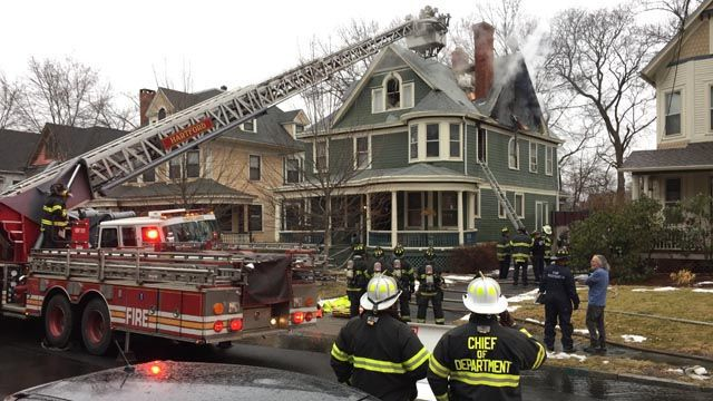 Exotic birds saved from Hartford house fire