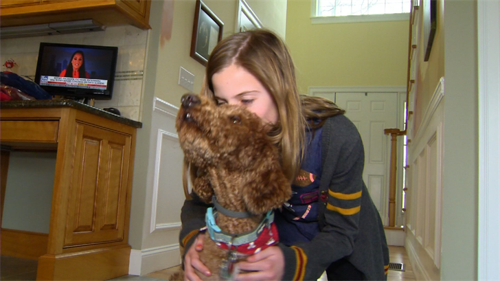 Southington dog reunited with family after missing for over a month