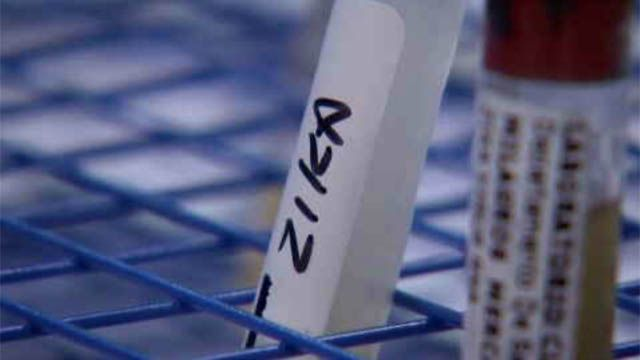Zika vaccine ready for first round of tests