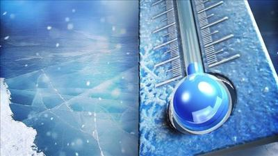 People took plunge in New Haven despite bitter cold temperatures