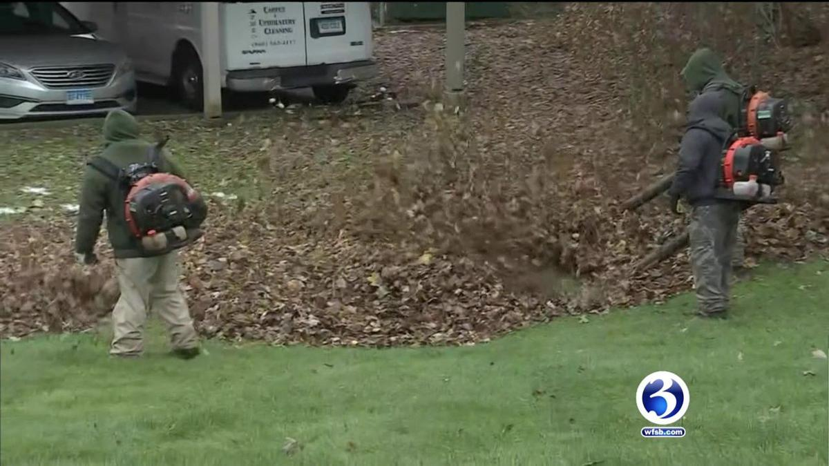 VIDEO: Leaf clean-up hindered by Winter Storm Zoe