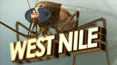 Third human case of West Nile Virus reported in Southington