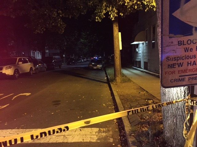 New Haven police investigating homicide
