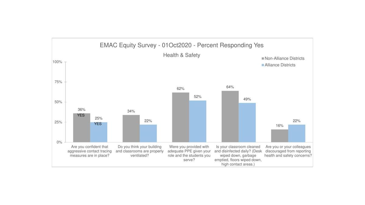 CEA's Equity Survey Results