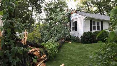 Intense storm brings tree down onto Enfield home