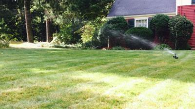 Berlin residents asked to conserve water amid drought conditions