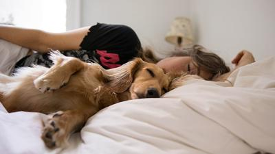 woman sleeping dog by her side