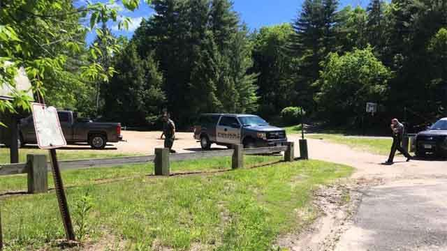 Bear euthanized after attacking woman in Simsbury