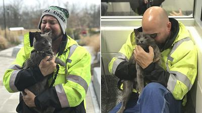 Trucker reunited with his lost cat after 4 months: 'It's my Christmas miracle'
