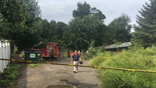 Police identify person killed after tree falls on car