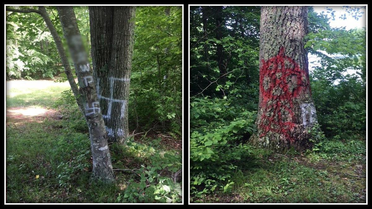Plaque, trees vandalized at Lake Williams State Park