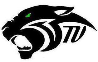 Tug Valley Panther logo.jpg
