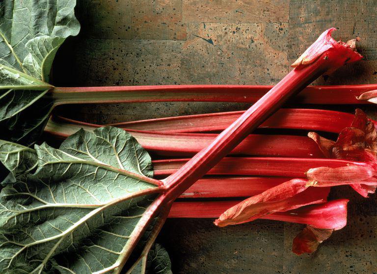 rhubarb--06052019_94554.jpg