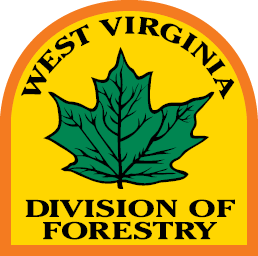 wv division of forestry logo