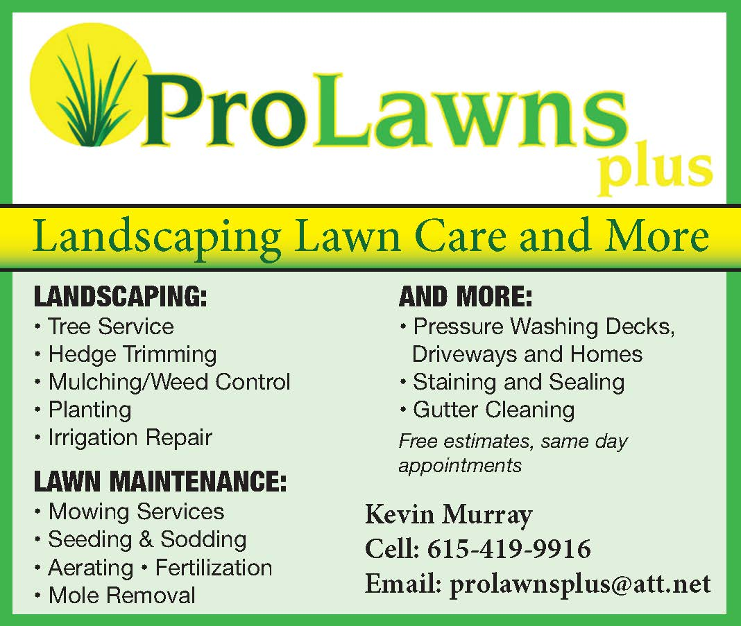 ProLawns Landscaping, Lawn Care and More