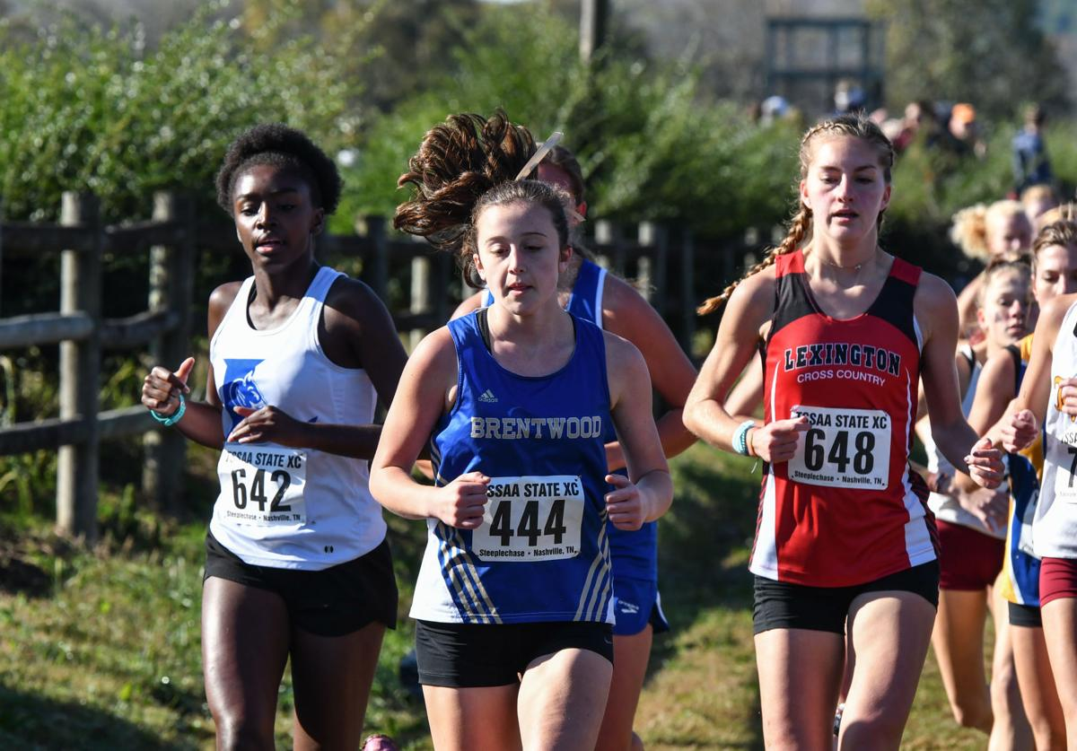 2019 State Cross Country – Division I Large Schools