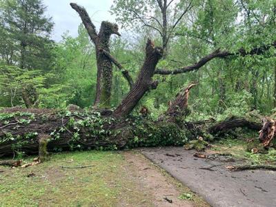 Brentwood storm damage