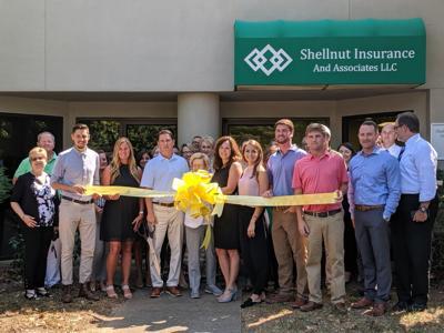 Shellnut Insurance