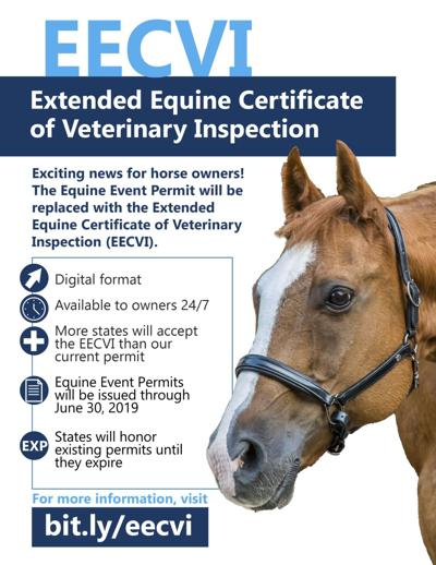 Extended equine certificate of veterinary inspection