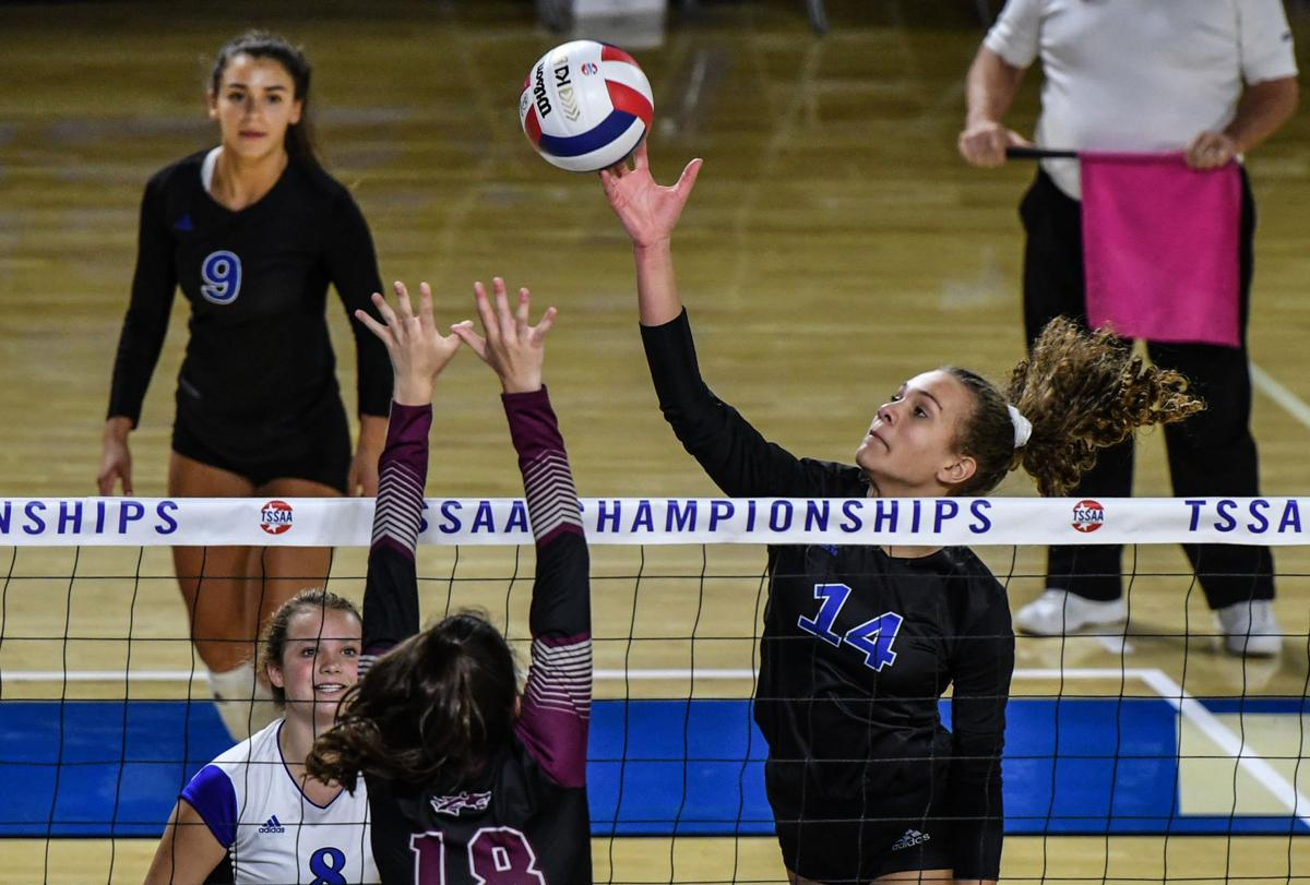 State Volleyball – Brentwood vs. Collierville, AAA Quarterfinals