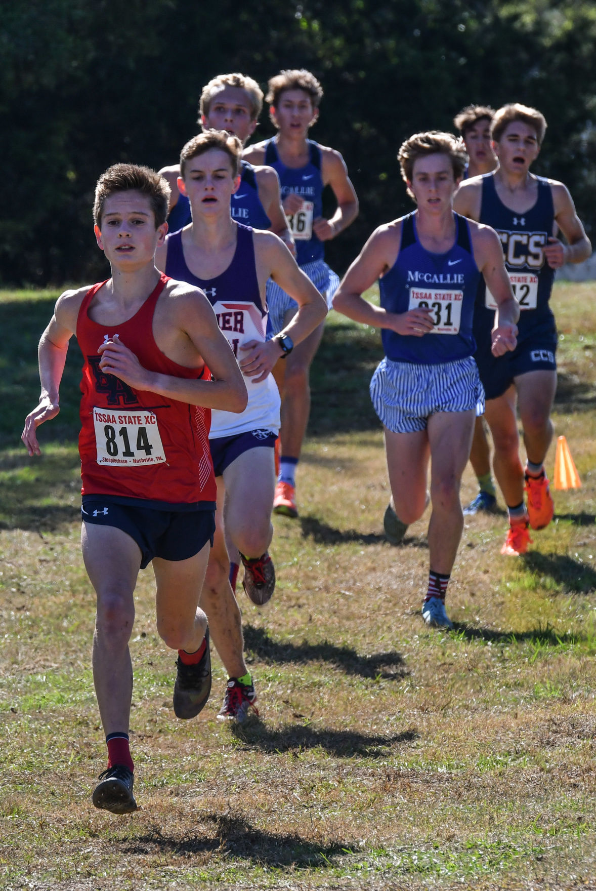 2019 State Cross Country – Division II-AA