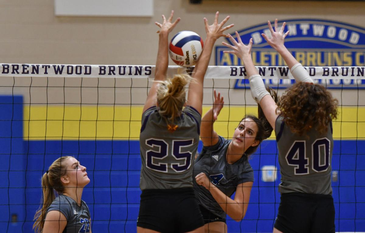 Volleyball – Father Ryan at Brentwood