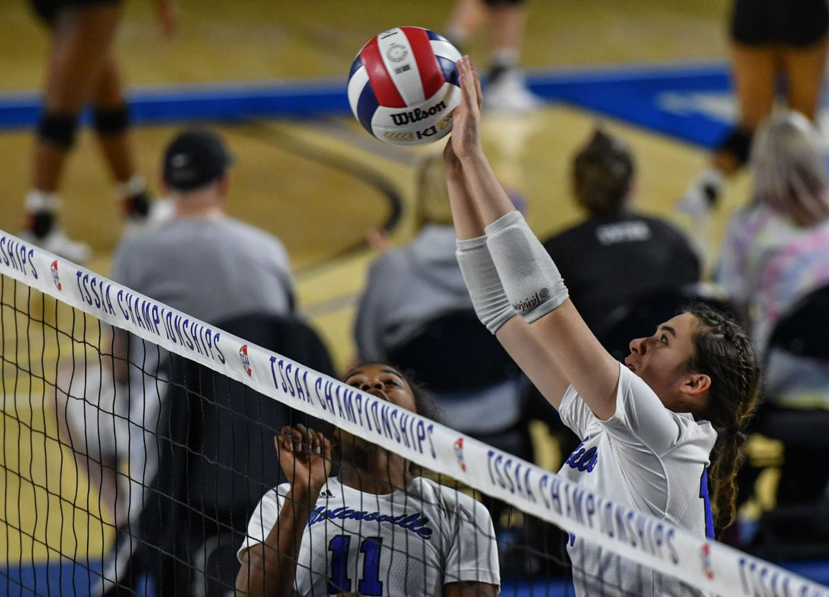 State Volleyball – Nolensville vs. Sullivan South, AA Quarterfinals